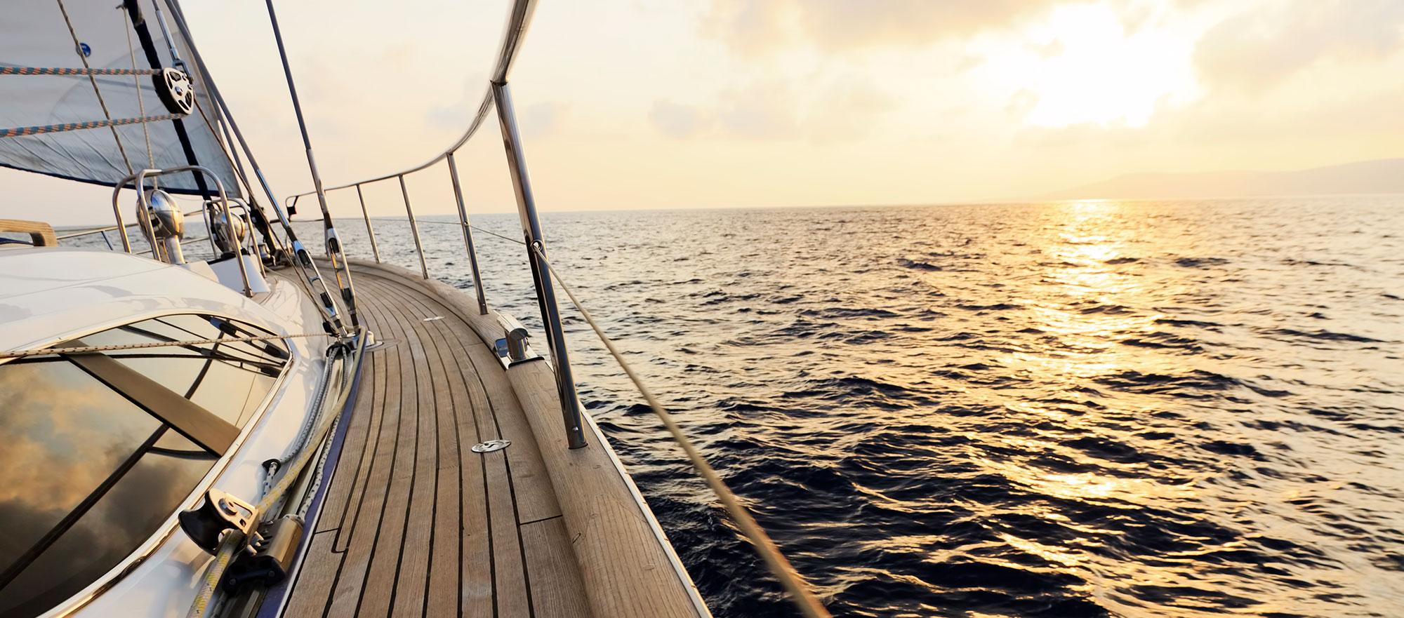Cruise Ship Secrets Hidden Decks Morgues Tiket River Safari Plus Boat Ride Dewasa Adult